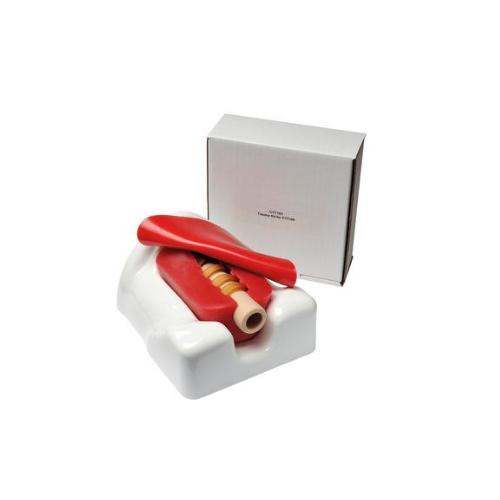 德国3B Scientific®微型气管切开术模拟器,单个包装