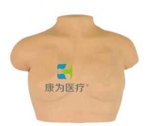 """""""康为医疗""""高级乳房按摩模型,乳房按摩模型"""