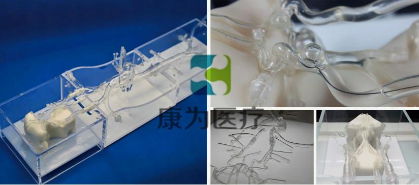 颅脑血管微创手术介入模拟训练模型系统 simulation training model system for minimally invasive cranio-cerebral vascular surgery (型号:MI4655)
